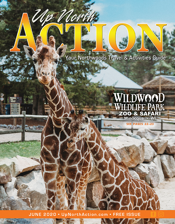 ActionJune2020Cover